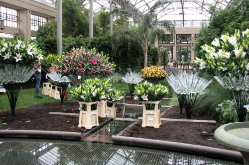 "The East Conservatory is currently being transformed into a ""Lilytopia,"" opening May 21."
