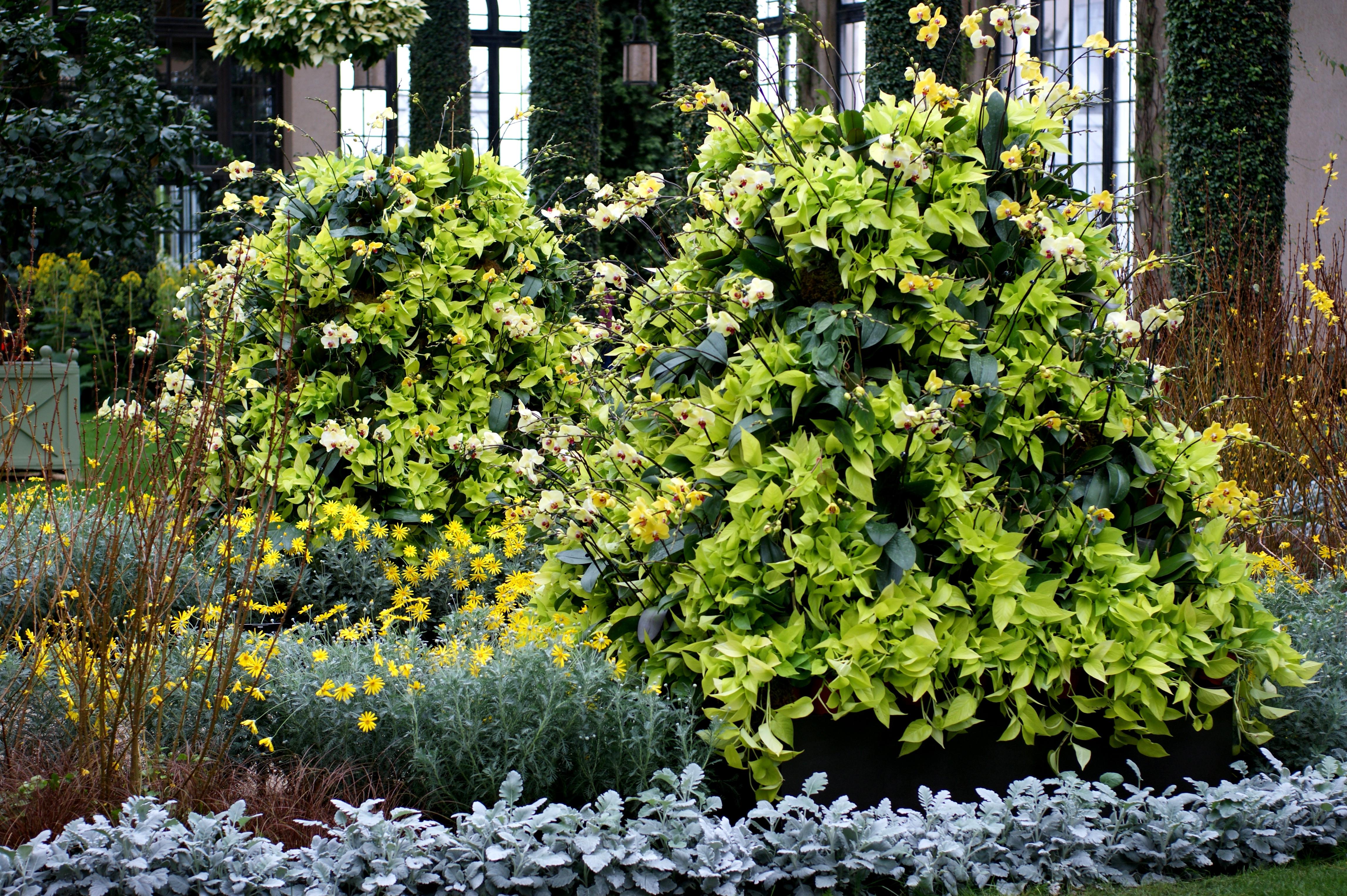 Decorare il giardino con i sassi - Decorazioni fai da te con sassi ...