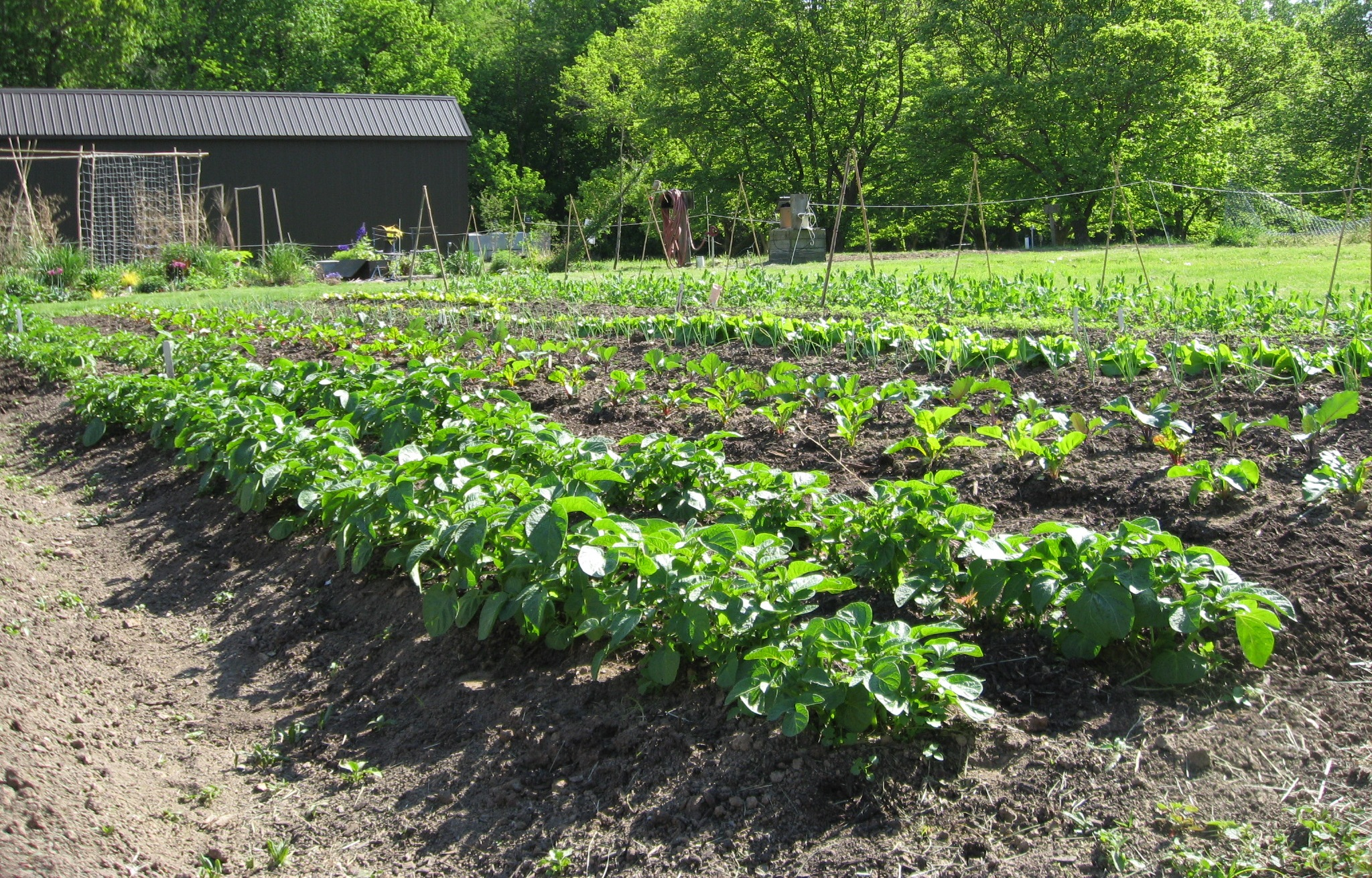 301 moved permanently for Vegetable plot design