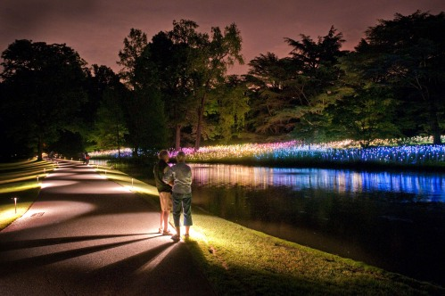 Use ambient light, from pathway lights or lampposts, to help capture your friends and family